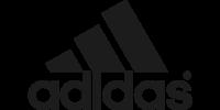 Adidas Terrex Speed Goretex