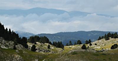 Les Hauts Plateaux du Vercors