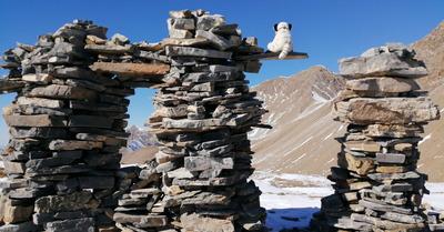 L'Aupillon (2916) et le Rocher des Cailles, très jolis sommets en Ubaye !