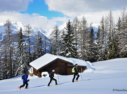 Sortie ski de randonnée Plan Bois