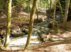 Cascade d'Angon et Pont des Fées
