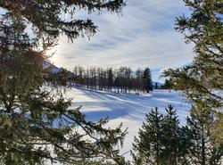 Place à l'hiver