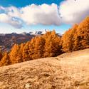 Sortie Gardiole de l'Alp